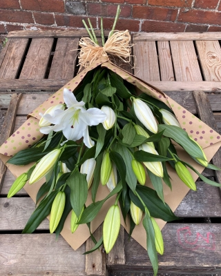 White Lilies Natural Range