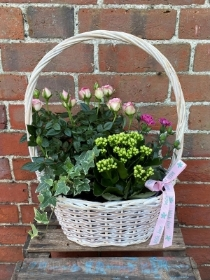 Pretty In Pink Planter